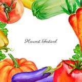 Waterverf plantaardige pompoen, tomaat, peper, courgette, bieten, wortel, peterseliehand getrokken illustratie die op wit wordt g royalty-vrije illustratie
