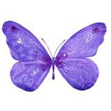 waterverf purpere vlinder Stock Foto's
