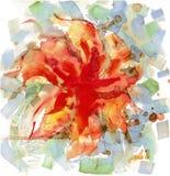 Waterverf rode bloem Stock Foto
