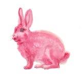 Waterverf roze konijn Stock Fotografie
