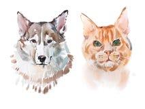 Waterverf schilderende, red-headed kat en hondaquarelle tekening Stock Foto's