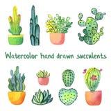 Waterverf succulente reeks met groene en geeloranje die cactussen en succulent in potten op wit worden geïsoleerd Stock Afbeeldingen