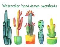 Waterverf succulente reeks met groene en geeloranje die cactussen en succulent in potten op wit worden geïsoleerd Royalty-vrije Stock Foto's