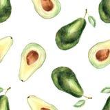 Waterverf tropisch naadloos patroon met avocado op een witte achtergrond stock illustratie
