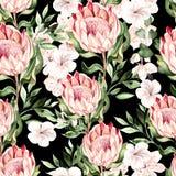 Waterverf tropisch patroon met hibiscus en proteabloemen stock illustratie