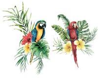 Waterverf tropische reeks met papegaaien en bloemenboeket Hand getrokken vogels, plumeria en hibiscus Bloemen geïsoleerd etiket royalty-vrije illustratie