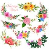 Waterverf Uitstekend bloemenkader Royalty-vrije Stock Afbeeldingen