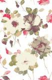 Waterverf van bloem Stock Afbeeldingen
