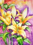Waterverf van bloemen Stock Foto's