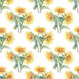 Waterverf van het zonnebloemen de vectorpatroon Stock Foto's