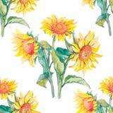Waterverf van het zonnebloemen de vectorpatroon Royalty-vrije Stock Afbeeldingen