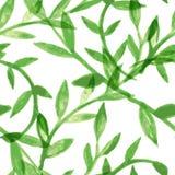 Waterverf vector naadloos patroon met groene bladeren Royalty-vrije Stock Afbeelding