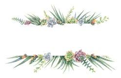 Waterverf vectorbanner van cactussen en succulente die installaties op witte achtergrond worden geïsoleerd Stock Foto