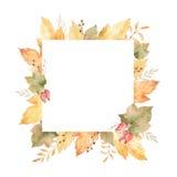 Waterverf vierkant die kader van bladeren en takken op witte achtergrond worden geïsoleerd Stock Afbeelding