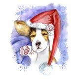 waterverf voor Kerstmis en nieuw jaar, hond in de hoed van de Kerstman, de winterhoed Stock Fotografie