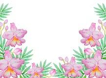 Waterverfachtergrond met roze orchideeën Stock Fotografie