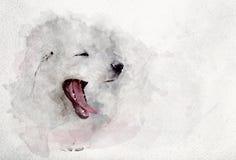 Waterverfbeeld van witte puppyhond geeuw royalty-vrije stock afbeeldingen