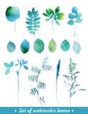 Waterverfbladeren en gras Stock Afbeelding