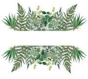 Waterverfbladeren verdeeld kader, Hand geschilderd bruncheskader royalty-vrije illustratie