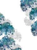 Waterverfbloemen op witte achtergrond Royalty-vrije Stock Afbeelding