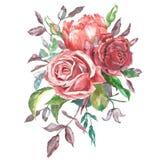 Waterverfboeket royalty-vrije illustratie