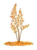 Waterverfboom, Getrokken en Geschilderde Hand Stock Afbeelding