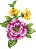 Waterverfgouache elegant uitstekend geel en purper of violet F stock illustratie