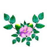 Waterverfhand geschilderde kroon met groene bladeren, purpere bloemen en takken stock illustratie