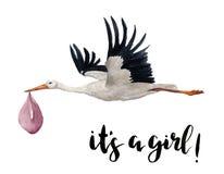 Waterverfhand geschilderde vliegende witte ooievaar met meisjesbaby De hand geschilderde die illustratie van de ciconiavogel op w royalty-vrije illustratie