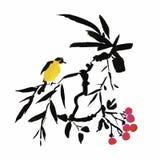 Waterverfhand getrokken patroon met tropische de zomerbloemen van en exotische vogels Royalty-vrije Stock Afbeelding