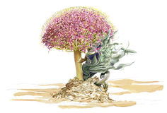 Waterverfillusteration van wilde bloem Stock Foto's