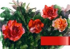 Waterverfillustratie die de rode rozen afschilderen Stock Foto's
