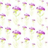 Waterverfillustratie met mooie abstracte purpere bloemen Ge?soleerdj op witte achtergrond Naadloos patroon royalty-vrije illustratie