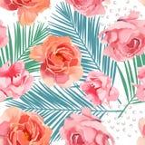 Waterverfillustratie van bloem roze pioen op witte achtergrond Stock Foto