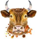 Waterverfillustratie van een rode stier Royalty-vrije Stock Afbeelding
