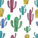 Waterverfillustratie van multi-colored cactussen Royalty-vrije Stock Foto