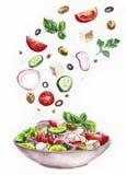 Waterverfillustratie van salade Stock Foto's