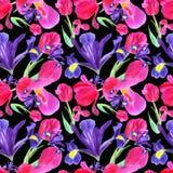 waterverfiris, tulp en bladeren naadloos patroon op zwarte achtergrond vector illustratie
