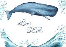 Waterverfkaart met oceanic zoogdieren royalty-vrije illustratie