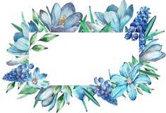Waterverfkader van blauwe de lentebloemen stock afbeelding