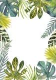 Waterverfkader van kleurrijke tropische bladeren Voor uitnodigingen, groetkaarten en Behang royalty-vrije illustratie