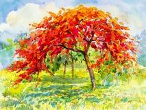 Waterverflandschap originele het schilderen rode kleur van pauwbloem Royalty-vrije Stock Afbeelding