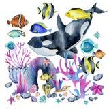 Waterverforka en oceanic tropische exotische vissen onder de koralenillustratie stock illustratie