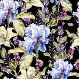 Waterverfpatroon met bloemeniris, lavendel, rozen, knoppen en bloemblaadjes stock illustratie
