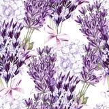 Waterverfpatroon met Lavendel Hand het schilderen watercolor vector illustratie