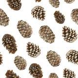 Waterverfpatroon van denneappels, Kerstbomen en ceder, naadloos patroon voor het verfraaien voor het vakantie nieuwe jaar en chri Royalty-vrije Stock Foto
