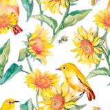 Waterverfpatroon Wit-oogvogel en zonnebloem Stock Afbeelding