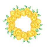 Waterverfplak van oranje fruit en groene bladerenkroon royalty-vrije illustratie