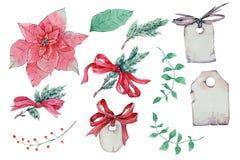 Waterverfpoinsettia De hand geschilderde die illustratie van de Kerstmisbloem op witte achtergrond wordt geïsoleerd stock afbeeldingen