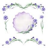 Waterverfreeks korenbloemenelementen, kadergrens, bloemen decoratief ornament Royalty-vrije Stock Foto